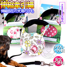 【培菓平價寵物網】DYY》繽紛寵物伸縮牽繩5米盒裝(花色多樣-隨機出貨)