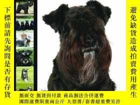 二手書博民逛書店Miniature罕見Schnauzer (Dog Breed