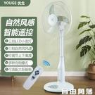 16寸充電風扇 可升降 搖控落地扇 臺式自動搖頭電風扇 可選配太陽能板充電 風扇燈