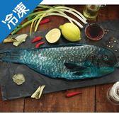 野生嬰哥魚600g上/尾【愛買冷凍】