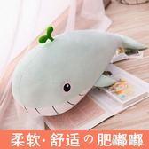毛絨玩具女生抱枕公仔可愛懶人抱著睡覺的大布娃娃鯨魚萌海豚TA6447【極致男人】