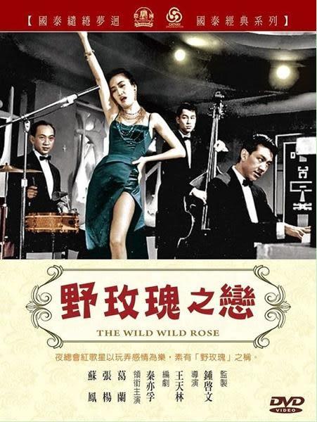 野玫瑰之戀 DVD (音樂影片購)