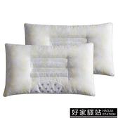 決明子枕芯枕頭磁石枕 一對裝 學生單人枕成人羽絲絨枕