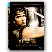 新動國際【紅太陽(BD)】Red Sonja BD