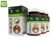 聖迦巴西蘑菇子實體膠囊(姬松茸)3瓶養生組