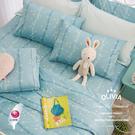 特大雙人床包兩用被套四件組 【DR650  Florence 】100%精梳純棉 台灣製 OLIVIA