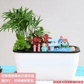 綠植微景觀組合盆栽DIY手工裝飾擺件辦公桌面水培植物創意生態瓶【限時八折】
