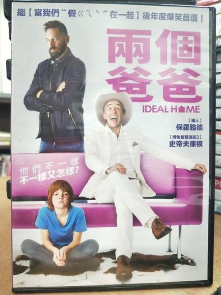 挖寶二手片-P19-025-正版DVD-電影【兩個爸爸】-保羅路德 史蒂夫庫根(直購價)