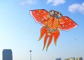 鳳尾金魚風箏大型高檔兒童成人微風易飛初學者2020年新款傳統紙鳶 滿天星