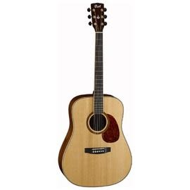 ★集樂城樂器★Cort Earth100 DX 木吉他!超特價~