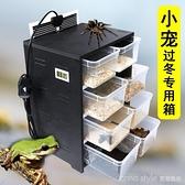 爬蟲保溫箱小爬寵飼養盒PVC角蛙烏龜蝎子蜘蛛守宮加熱繁殖寵物櫃 新品全館85折 YTL