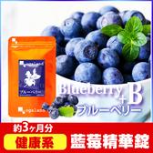 藍莓精華錠 B群添加☻ 視覺維持 健康補給 【約3個月份】ogaland