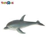 玩具反斗城 海豚