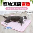 寵物冰絲涼感墊XS 座墊 涼墊 寵物散熱墊 寵物涼墊 涼感 椅墊 狗墊 貓墊 寵物墊 米荻創意精品館