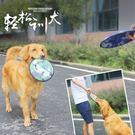 訓練玩具 寵物玩具狗飛盤狗飛碟訓練金毛拉布拉多德牧耐咬飛盤 mc4488『M&G大尺碼』