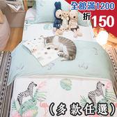涼夏風 D1雙人床包三件組  多種花色任選 台灣製造  100%純棉 棉床本舖