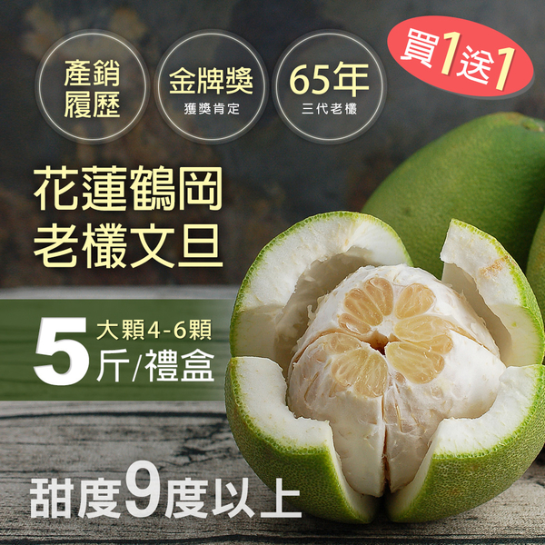 65年老欉花蓮鶴岡文旦5斤禮盒