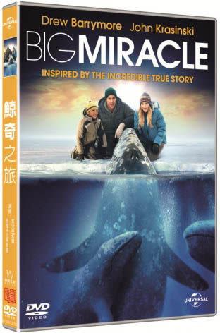 鯨奇之旅 DVD (購潮8)