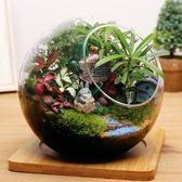 苔蘚微景觀小盆栽植物生態瓶迷你盆栽diy龍貓禮物擺件玻璃盆栽 雙12購物節