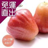 沁甜果園SSN. 黑珍珠蓮霧禮盒(4斤裝,每顆約90-115g)【免運直出】