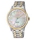 CITIZEN 星辰 光動能萬年曆手錶 FC8008-88D 雙色/35.8mm