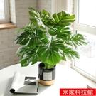 桌面盆栽 北歐創意仿真綠植室內小盆栽龜背植物客廳桌面擺件辦公室裝飾假花 米家WJ