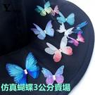 永生花配材,雙層翅膀夢幻仿真蝴蝶,3公分賣場