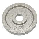 奧林匹克鑄鐵槓片5KG(二入)/重量片/烤漆槓片/重量訓練/