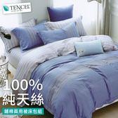 加大 100%純天絲萊賽爾纖維Tencel 鋪棉兩用被床包四件組【威爾斯】