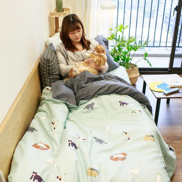 貓窩  S1單人床包二件組  100%精梳棉  台灣製 棉床本舖