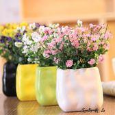雛菊滿天星絹花假花塑料仿真花