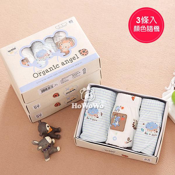 男童有機棉內褲 韓國舒適透氣三角褲禮盒 (3件裝) FU0012 好娃娃