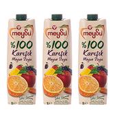 (組)土耳其meysu 100%綜合果汁1L 3入組