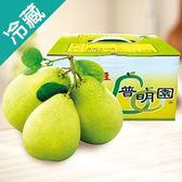 麻豆普明園文旦禮盒5斤/盒【愛買冷藏】