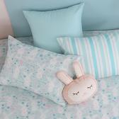 鴻宇 單人床包組 眠眠兔藍 美國棉授權品牌 台灣製2225