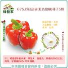 【綠藝家】G75.彩紅甜椒(紅色甜椒)種...