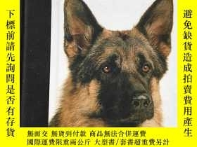 二手書博民逛書店the罕見German shepherd dogY266787