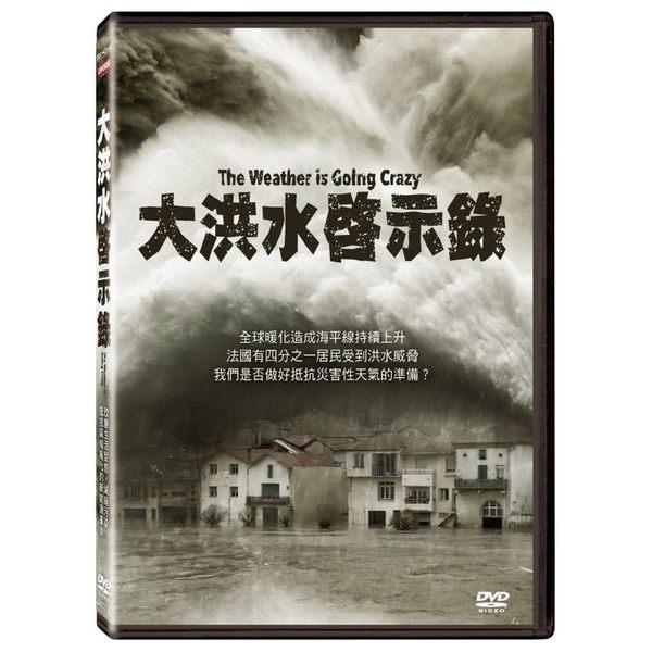 大洪水啟示錄 DVD The Weather is Going Crazy 免運 (購潮8)