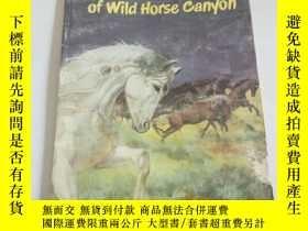 二手書博民逛書店star罕見of wild horse canyou(英文, 不