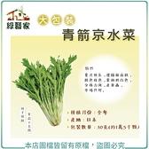 【綠藝家】大包裝A37.青箭京水菜種子30克