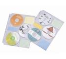 雙鶖牌 FLYING   CD5005  6片CD內頁-10入 / 包