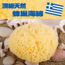 希臘進口天然海綿-蜂巢海綿4~5吋(肌膚...