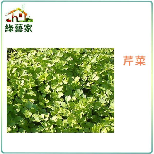【綠藝家】大包裝F03.芹菜 (田尾種)種子150克