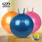 成人羊角球加厚防爆跳跳球健身球65cm瑜伽球手柄球成人大號充氣球 快速出貨
