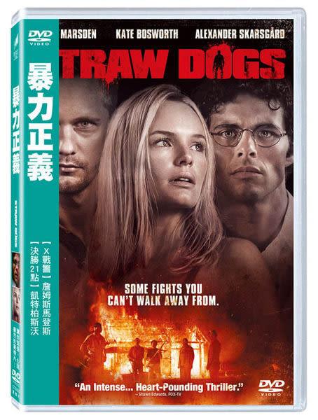 暴力正義 DVD   (購潮8)