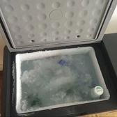 車載冰箱 冰虎車載冰箱壓縮機制冷12V24V車家兩用冷凍冷藏迷你小型