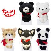 【日本正版】動物 排排坐玩偶 Chokkorisan 拍照玩偶 坐坐人偶 573187 573194 575624 575631 575648