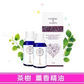 【愛戀花草】陽光澳洲茶樹 水氧薰香精油 10ML