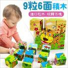 兒童認知玩具木質木製9粒六面畫立體拼圖-...