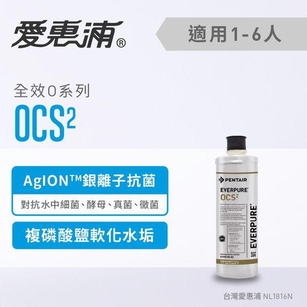 愛惠浦EVERPURE 銀離子抑垢濾芯OCS2 ~ DIY